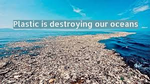 Plastic Pollution in the Oceans is Killing Marine Life | Paktales